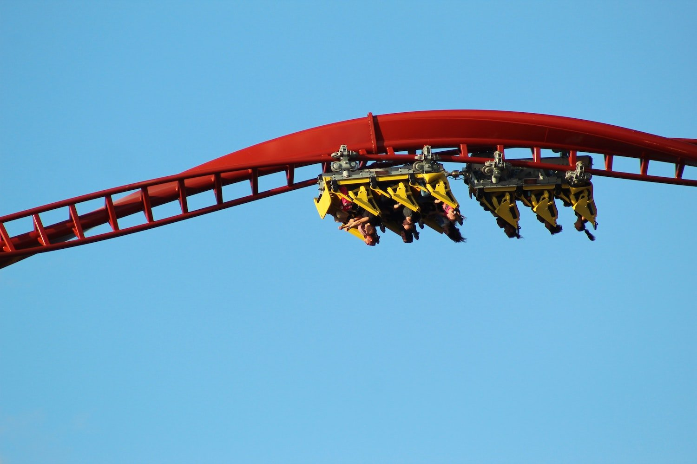Blog #18 'De Python'